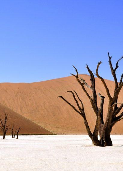 La sécheresse